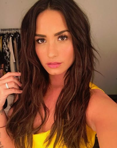 Demi Lovato, Selfie With The Big Hair