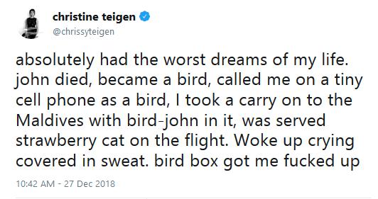 Bird box tweets 01