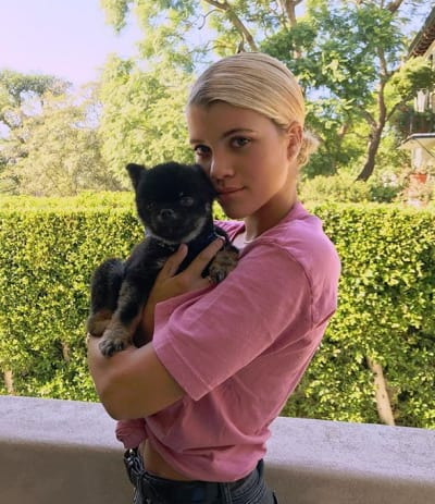 Sofia Richie and a Puppy