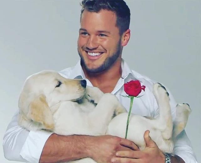 Colton underwood cradles a puppy