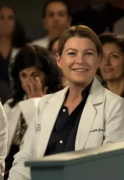 Ellen Pompeo on Season 14