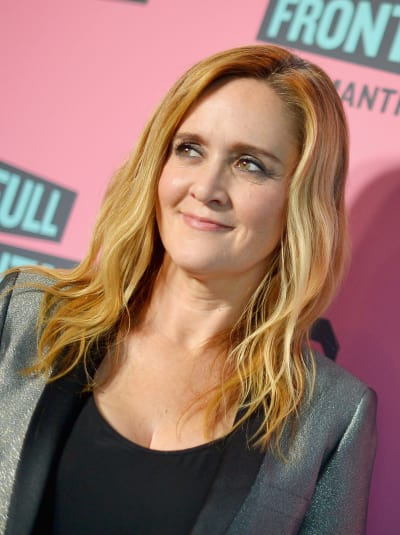 Samantha Bee Red Carpet Pic