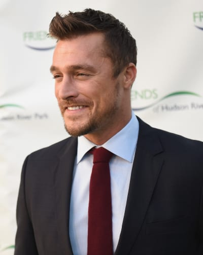 Chris Soules on a Red Carpet