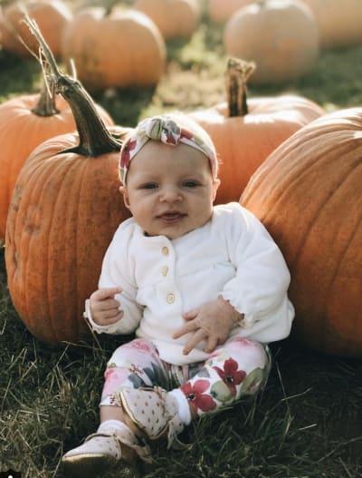 Ember at a Pumpkin Patch
