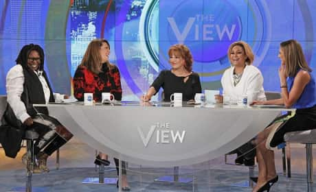 The View Panel