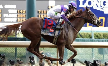 I'll Have Another Drops Out of Belmont Stakes, Ends Triple Crown Bid