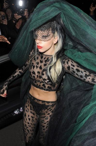 Leopard Gaga