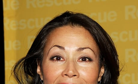Ann Curry Red Carpet Pic