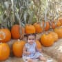 Dream Kardashian in a Pumpkin Patch