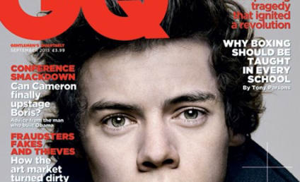 "Harry Styles ""Pretty Sure"" He Is Not Bisexual"