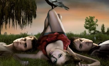 The Vampire Diaries is Better Than Twilight, Newspaper Claims