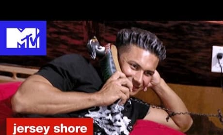 Pauly D Accuses His Date of Being a Stalker
