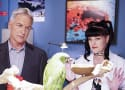 CBS Responds to Pauley Perrette Assault Allegations