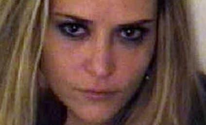 Charlie Sheen Defends Brooke Mueller as Non-Drug Dealer