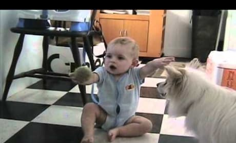 Dog Teaches Baby How to Play Fetch