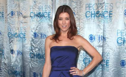 Kate Walsh is Pregnant ... with a Television Show