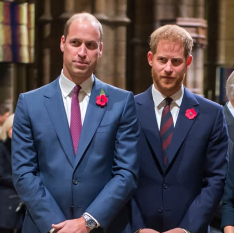 Prince Harry and Prince William in Suits