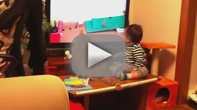 Cat and Child: Mesmerized by TV!