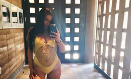 Ariel Winter Swimsuit Photo Just Made This Summer Even Hotter