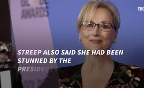 Donald Trump Lays Into Meryl Streep