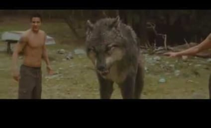 OMFG! New Moon Clip of the Day: Jacob Goes Werewolf!