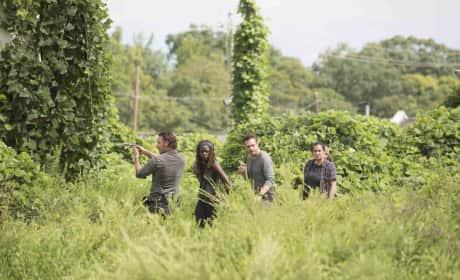 Another Supply Run - The Walking Dead Season 7 Episode 9