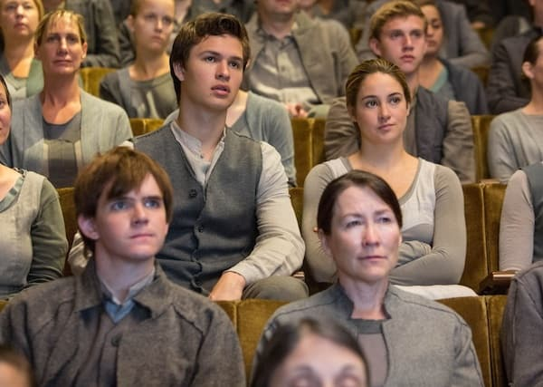 """Divergent """"Shades of Gray"""" Photo"""