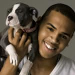 Chris Brown, Dog