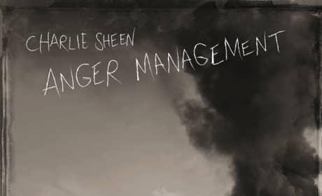 FX Anger Management Poster
