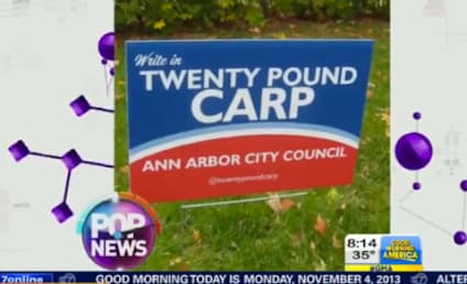 20-Pound Carp Loses Bid For Ann Arbor City Council