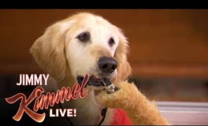 50 Cent Joins the Air Bud Franchise in Hilarious Jimmy Kimmel Sketch! Watch Now!