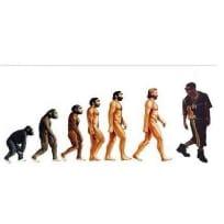 Drake Meme Evolution