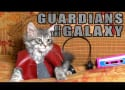 Kittens Reenact Guardians of the Galaxy, Present... Guardicats of the Galaxkitty!