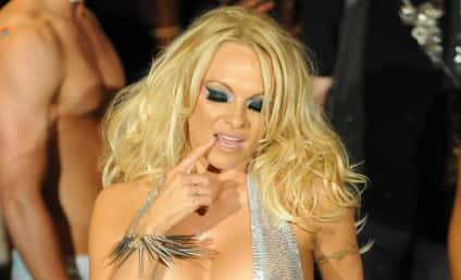 Nearly Nude Pamela Anderson Poses for Photographers