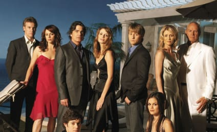 The OC Stars: Where Are They Now?
