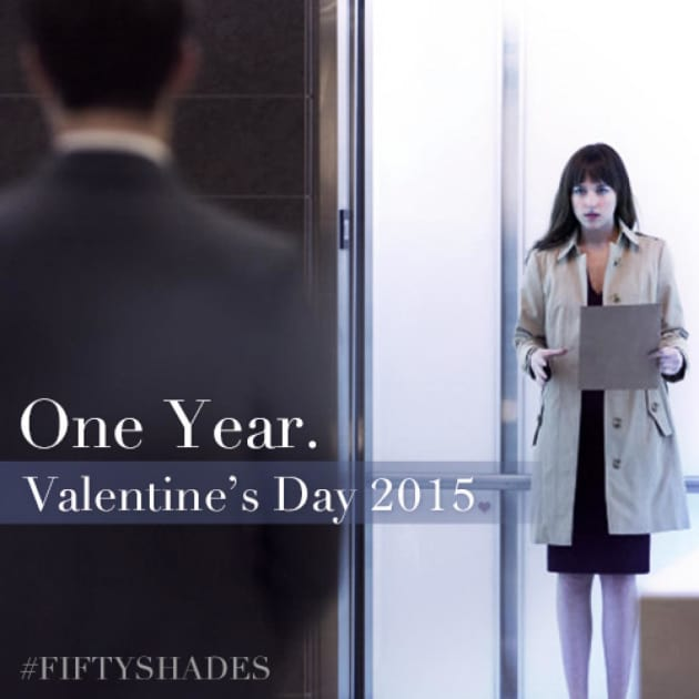 Fifty Shades of Grey Poster: One Year.