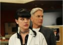 Pauley Perrette to Mark Harmon: You're Dead to Me!