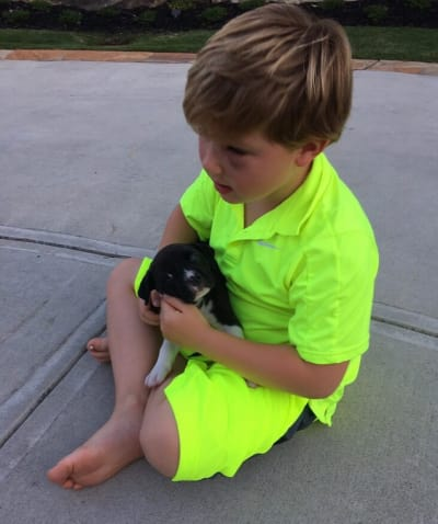 Kash Biermann Snuggles a Puppy