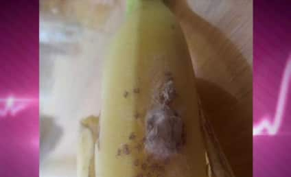 Spiders Hatch Out of Banana in London, Force Couple to Evacuate Home