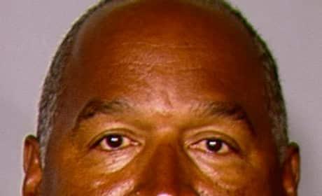 O.J. Simpson Mug Shot (2013)