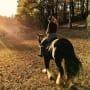 Miranda Lambert Loves Horses
