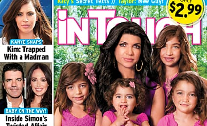 Teresa Giudice: Destroyed by Fame!