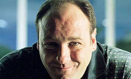 "James Gandolfini Death: Colleagues, Fans React to Passing of ""Genius"""