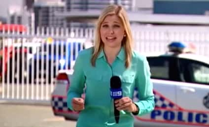 Reporter Gets Bitten by Ant, Is in Great Deal of Pain