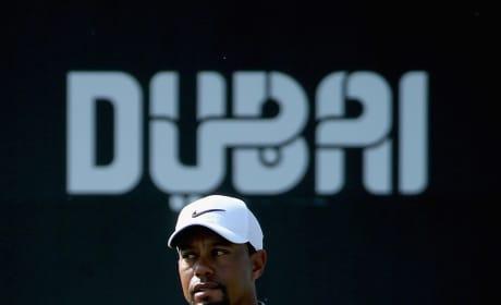Tiger Woods in Dubai