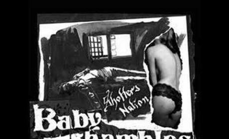 What Katie Did Next - The Babyshambles