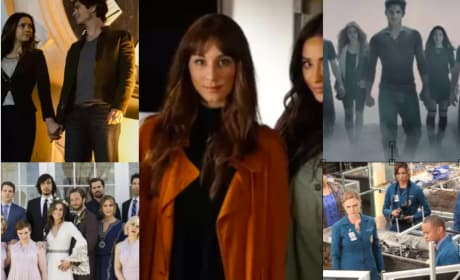 13 TV Shows Ending In 2017