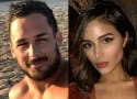 Danny Amendola: DUMPED After Cheating on Olivia Culpo!