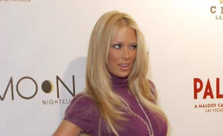 Jenna Jameson Purple Dress