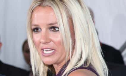 Britney Spears' Divorce Finalized, Custody Fight Persists